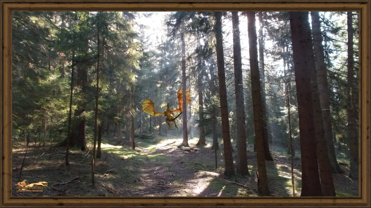 magic forest 3 framed-x